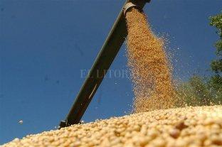 El precio de la soja subió en Rosario y alcanzó los $ 25.800 la tonelada