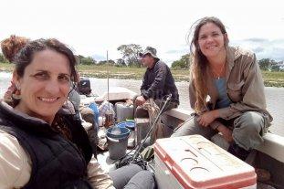 Hallaron una diversidad de casi 9 mil especies de bacterias en el río Paraná