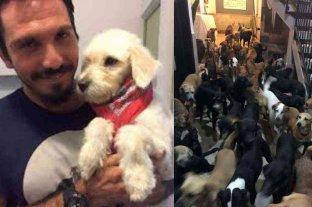 """Resguardó a más de 300 mascotas del huracán """"Delta"""" y se hizo viral"""