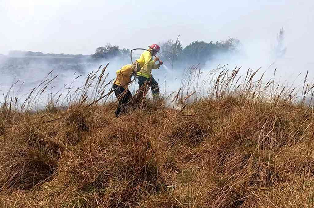 Sotelo destacó la colaboración de los bomberos voluntarios y la gente de Santa Rosa. Crédito: Télam