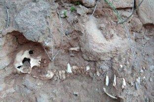 Río Negro: hallaron el esqueleto de un niño en las bardas de Isla Jordán