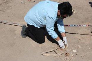 Construían un barrio en San Juan y hallaron un yacimiento arqueológico