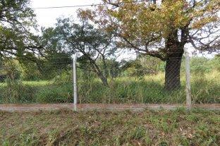 """Robaron en la Granja """"La Esmeralda"""" - En junio un equipo de Campolitoral recorrió las instalaciones y notó un preocupante estado de abandono"""