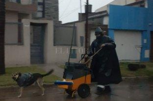 Una bolsita y el fiel amigo sigue firme en el trabajo