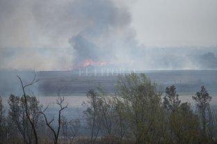 Intendente de Rosario sospecha de bengalas desde avionetas como origen de incendios en el Delta -  -