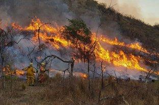 Incendios: advierten que Córdoba atraviesa la peor situación ambiental de la historia