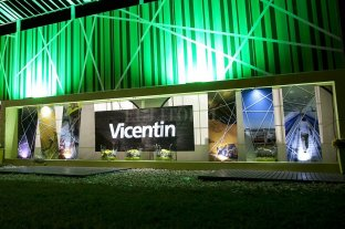 """El Banco Nación pidió a la Justicia que investigue si el balance 2019 de Vicentin es """"falso"""" -  -"""