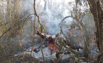 Siguen activos tres focos de incendios en Jujuy