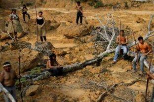 Brasil: extienden por otros cinco meses el despliegue del Ejército en el Amazonas
