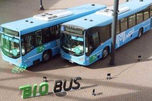 Santa Fe apuesta al uso de los biocombustibles   - En Rosario, la experiencia de bio en el transporte tuvo resultados muy alentadores.    -
