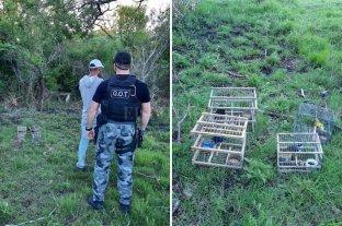 Detuvieron a un hombre por caza ilegal de aves en el norte provincial