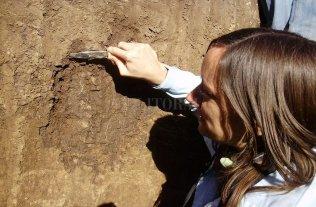Especialistas argentinos anticipan un cambio de paradigma en el uso del suelo