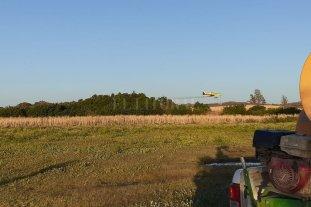 Controlan una manga con aviación agrícola