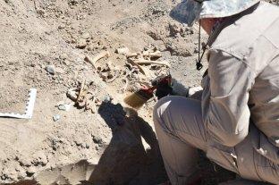 San Juan: la Universidad Nacional peritará los restos humanos hallados en una obra privada