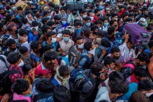 India superó los ocho millones de contagios de coronavirus