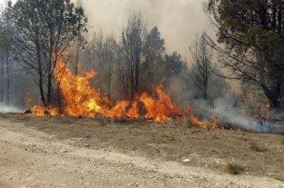 Con seis focos activos, Salta es la provincia más afectada por los incendios forestales
