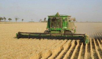 La Red de Buenas  Prácticas  Agropecuarias cumplió  6 años