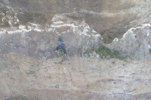 """Mar del Plata: finalmente, se supo que el hombre """"empujó"""" a la chica por el acantilado -"""