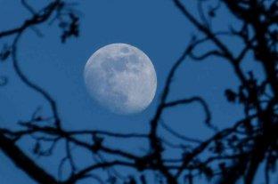 """La """"Luna Azul"""" iluminará el cielo en la noche de Halloween"""