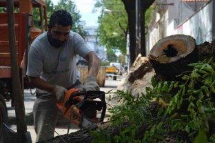 Cuadrillas municipales aceleran tareas de desmalezado y limpieza en los barrios