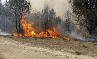 Jujuy, Entre Ríos y Corrientes registran focos activos de incendio forestales