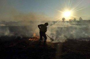 Cinco provincias continúan este domingo con focos activos de incendios forestales