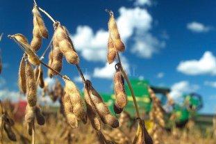 El precio de la soja subió $ 250 y cerró a $ 27.250 en Rosario