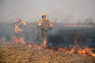 Cleri acusó a ganaderos por los incendios en el delta del Paraná