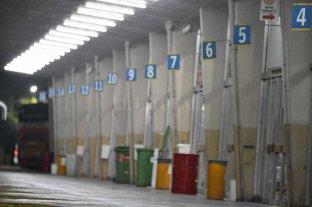 Reabre la terminal de ómnibus: así será la nueva organización