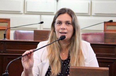 """Di Stefano: """"En 8 meses de pandemia la ministra de Educación no dio ninguna respuesta y así estamos hoy"""""""