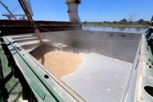 La cosecha 2020/2021 de soja y maíz podría alcanzar un valor récord