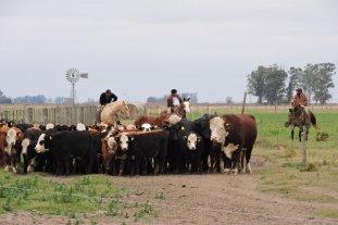 Acceso a la tierra: pequeños y medianos productores piden ser parte de la discusión