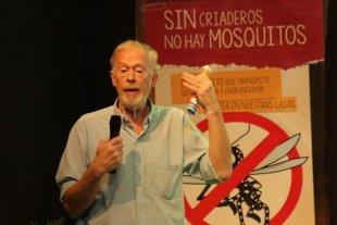 Cambio de estrategia: más que prevenir el dengue  hay que evitar la proliferación del Aedes Aegypti