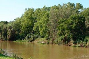 Media sanción para una nueva reserva natural en el sur de Santa Fe
