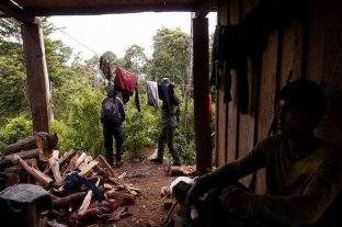 Asesinaron a 13 recolectores de café en medio de una guerra por territorios en Colombia