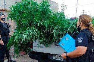 Un arma, droga y dinero  en barrio Los Hornos