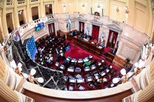 Senado suspende parte de su agenda para homenajear a Maradona