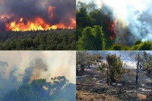 Denunciaron penalmente por estragos a quienes iniciaron el incendio en la Reserva Yabotí en Misiones