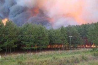 La lluvia puso fin a los incendios rurales en Corrientes