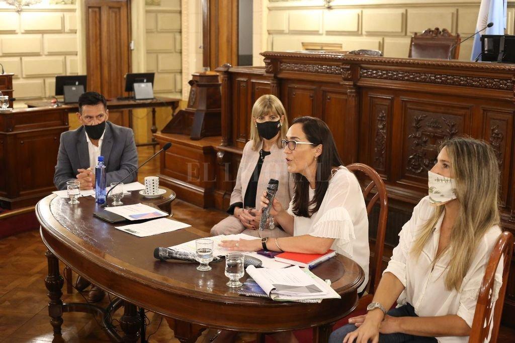 Fue clave para la media sanción una reunión en el Senado de la que participó la ministra Erika Gonnet. El senador radical Lisandro Enrico (General López) expuso las modificaciones. Crédito: Gentileza