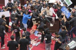 """Escándalo en Taiwan: lanzaron """"achuras"""" de cerdo en plena sesión del Congreso"""