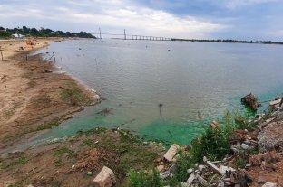 Rosario: aparecieron zonas de agua verde fosforecente en aguas del Río Paraná