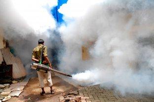 Según la Organización Mundial de la Salud, la lucha contra la malaria quedó estancada