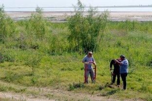 Delimitan bosques nativos a la vera de la laguna Setúbal -  -