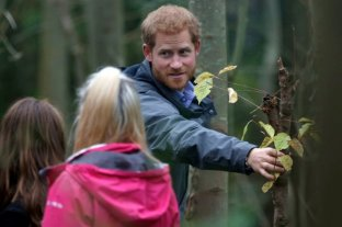 Confundieron al príncipe Harry con un vendedor de arbolitos de navidad