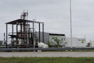 Hartas de esperar, bioenergéticas irán a la justicia para hacer cumplir la ley de biocombustibles