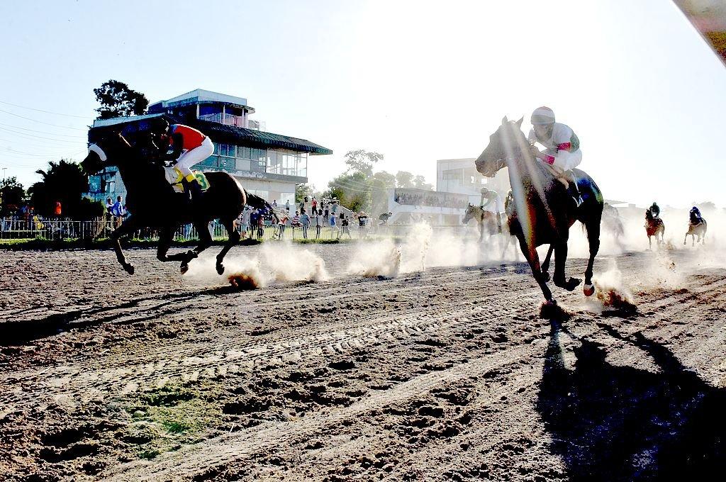 Sycomore War (izquierda) vence en final apretado a Predatore el mes pasado en el Carlos Pellegrini, ahora el caballo de Juan Márquez se planta como el gran candidato del Clausura. Crédito: Manuel Fabatia