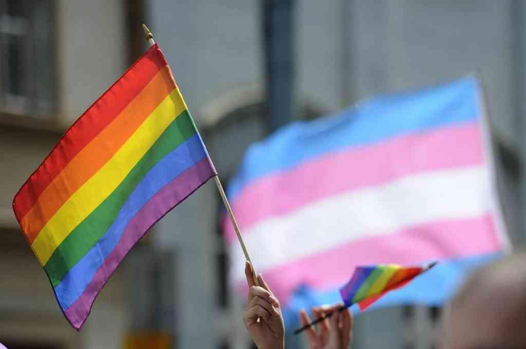 Prohíben la adopción a las parejas del mismo sexo — Hungría
