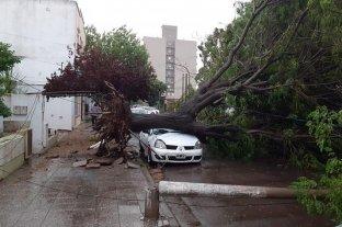 Video: una tormenta de viento causó destrozos en Santa Rosa de La Pampa