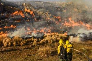 Promulgaron la ley que prohíbe la venta de terrenos incendiados
